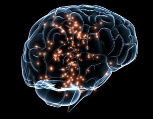 activité neuronale